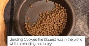 Dog Only Eats Half Her Food and Leaves the Other Half for the Most Heart-Wrenching Reason Ever