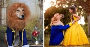 9 Enchanting Pets Bamboozling Us In Disney's Beauty & The Beast Costumes