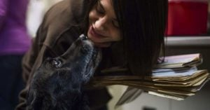 """""""Dead"""" Dog Returns Home After Ten Years and Her Family is Shocked Beyond Words"""